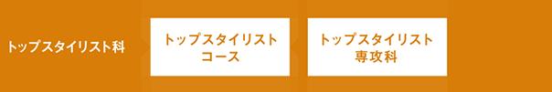 TOP STYLIST トップスタイリスト科 大村美容ファッション専門学校